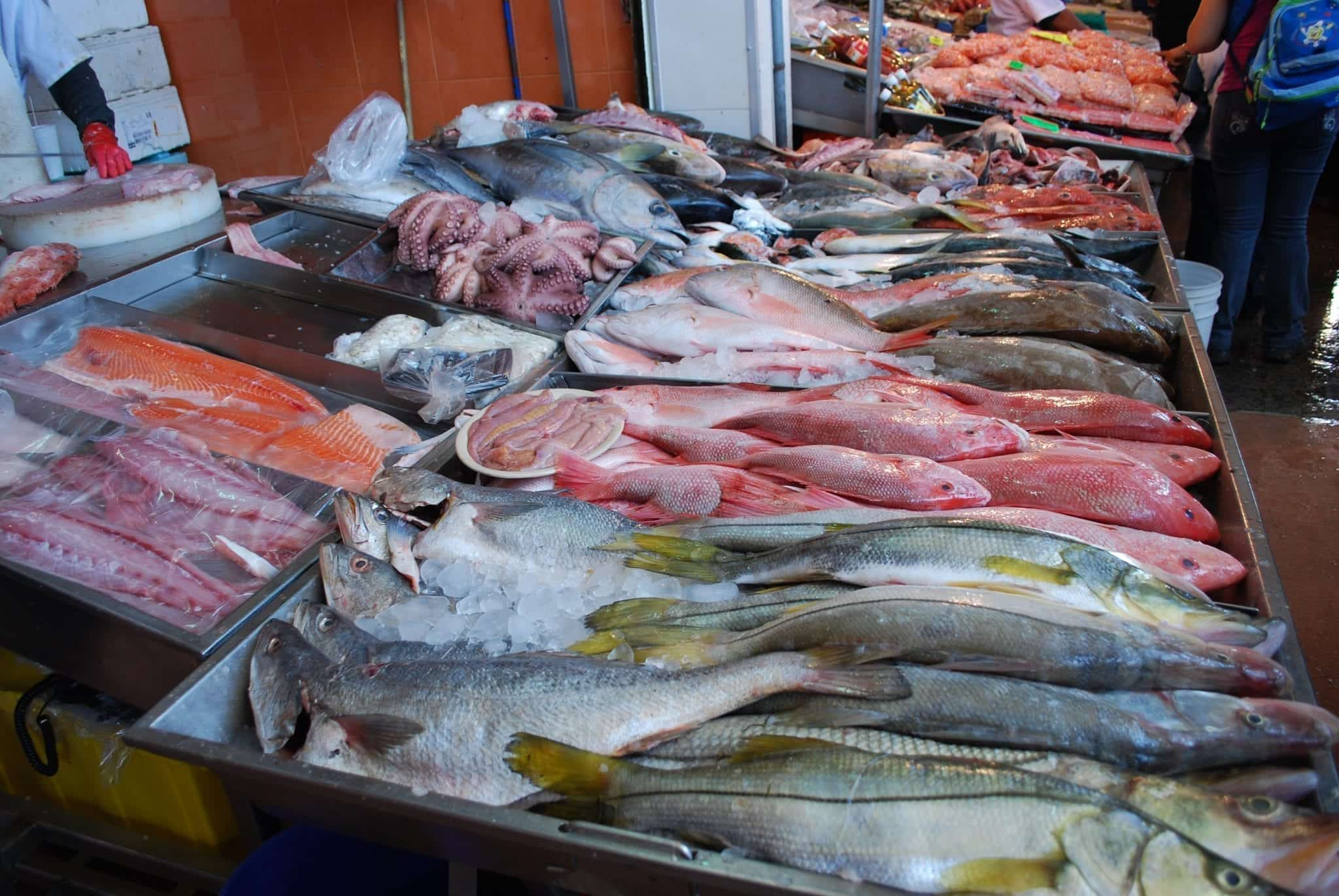 Fish for sale at La Nueva Viga Market in Mexico City; By AlejandroLinaresGarcia (Own work), CC BY-SA 4.0, via Wikimedia Commons, no changes.