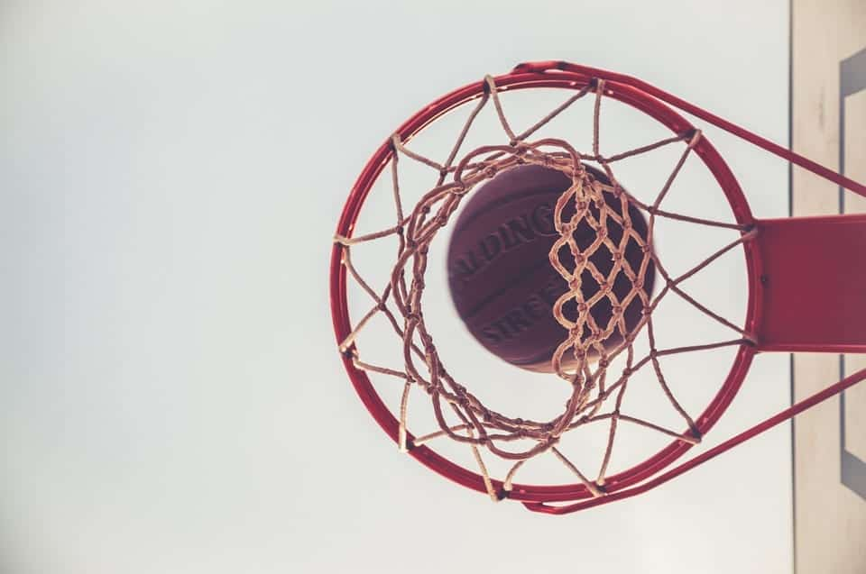 Basketball and Basketball net