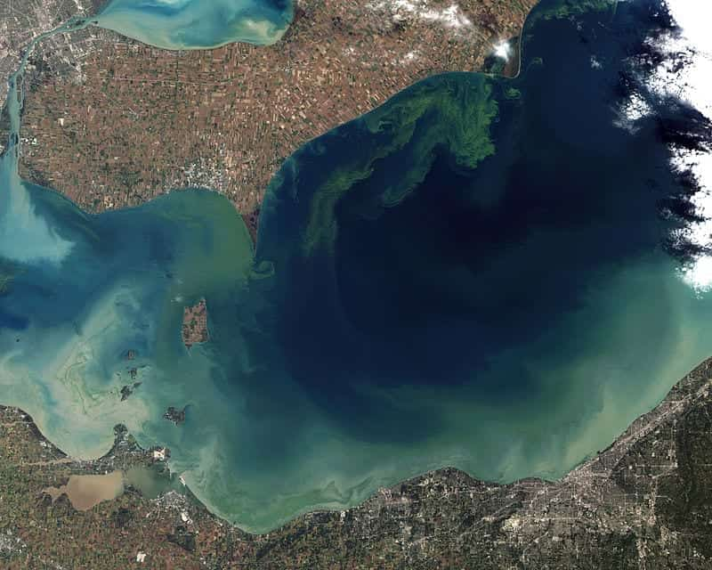 Taken from orbit in October 2011, the worst algae bloom that Lake Erie has experienced in decades