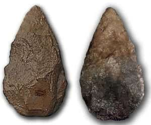 A close up view of the front and back of a stone hand axe, against a white background.