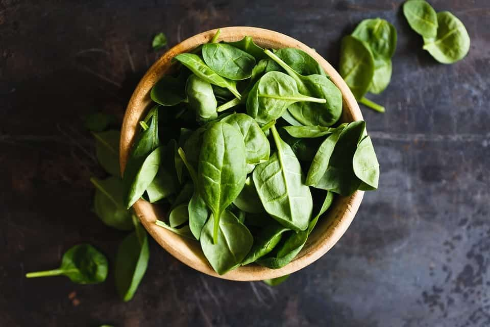 Bowl of basil