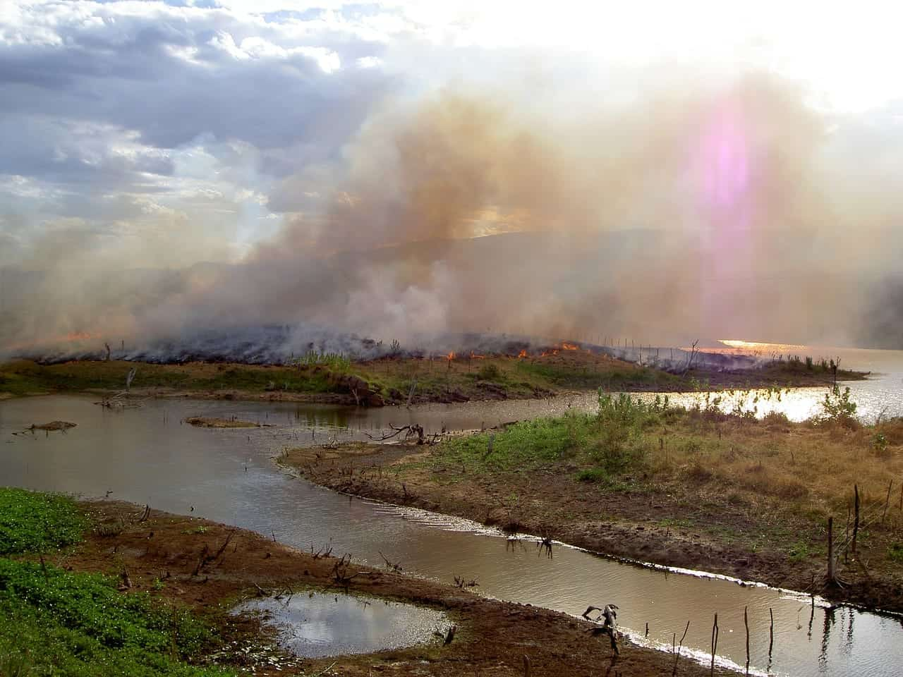 Smoke rises above a burning Amazon being cleared for agriculture.