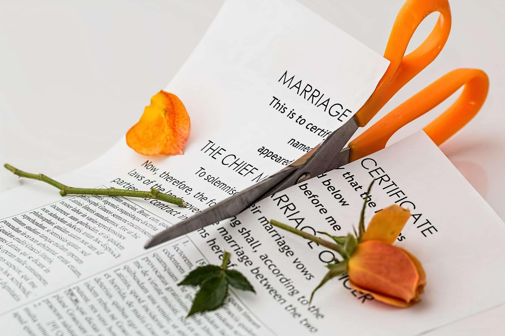 Marriage certificate with orange rose, both being cut in two by orange-handled scissors; image by Stevepb, via Pixabay.com.