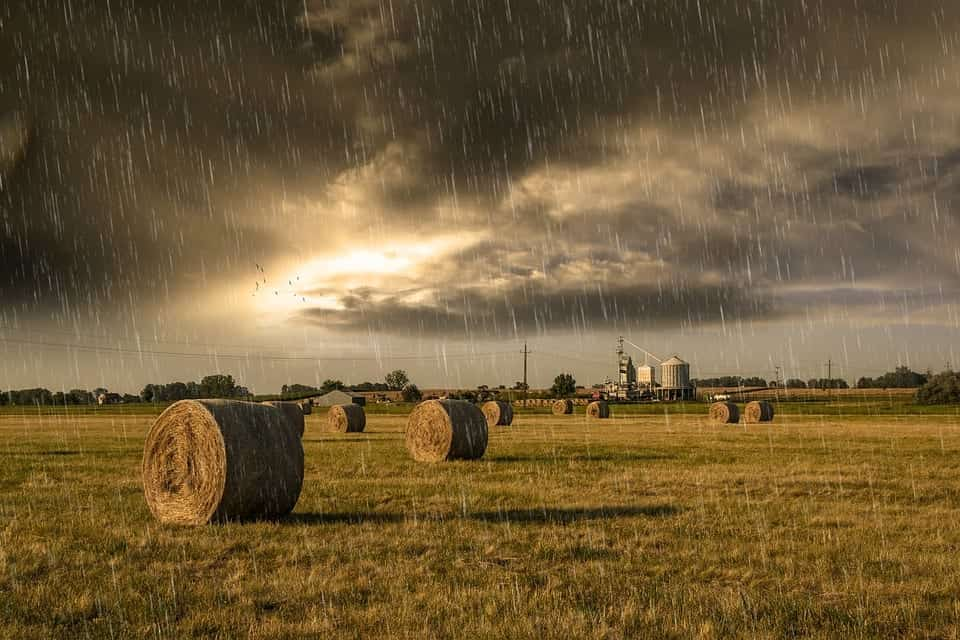 A rainy day in farm country, spoiling the hay.