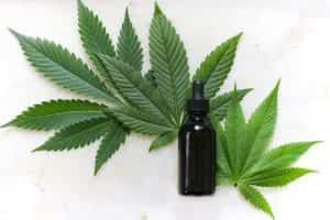 Florida Lawsuit Asks for More Oversight for CBD and Hemp